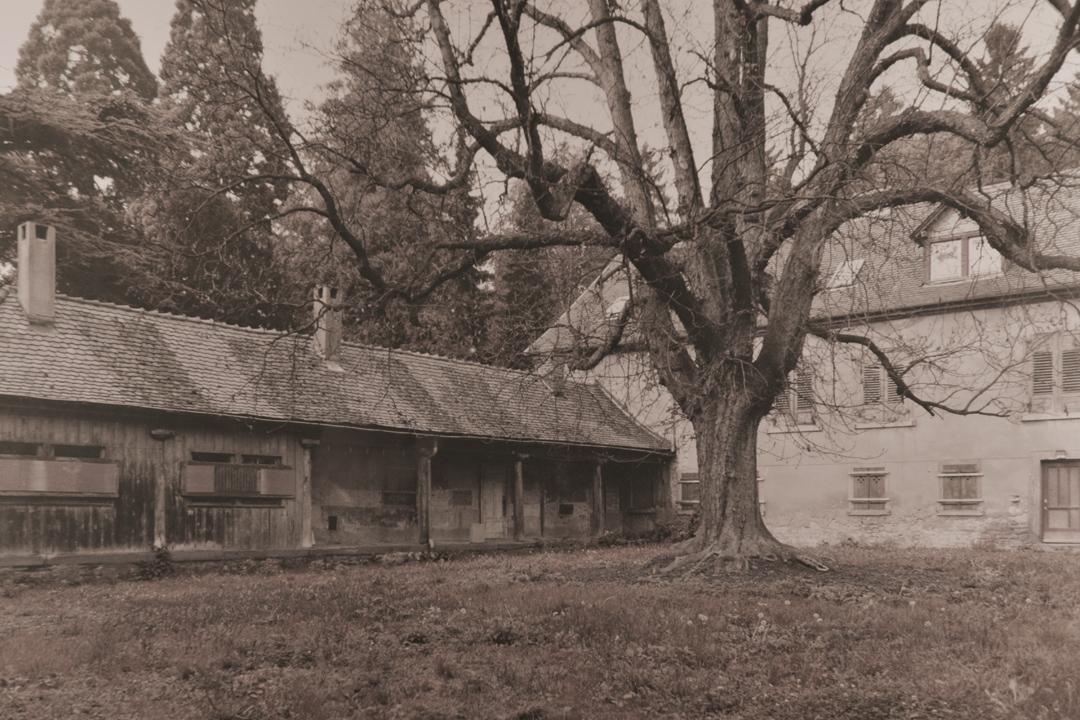 Historisches Bild der Watts Brasserie in Ettlingen – Die Geschichte der Villa Watthalden
